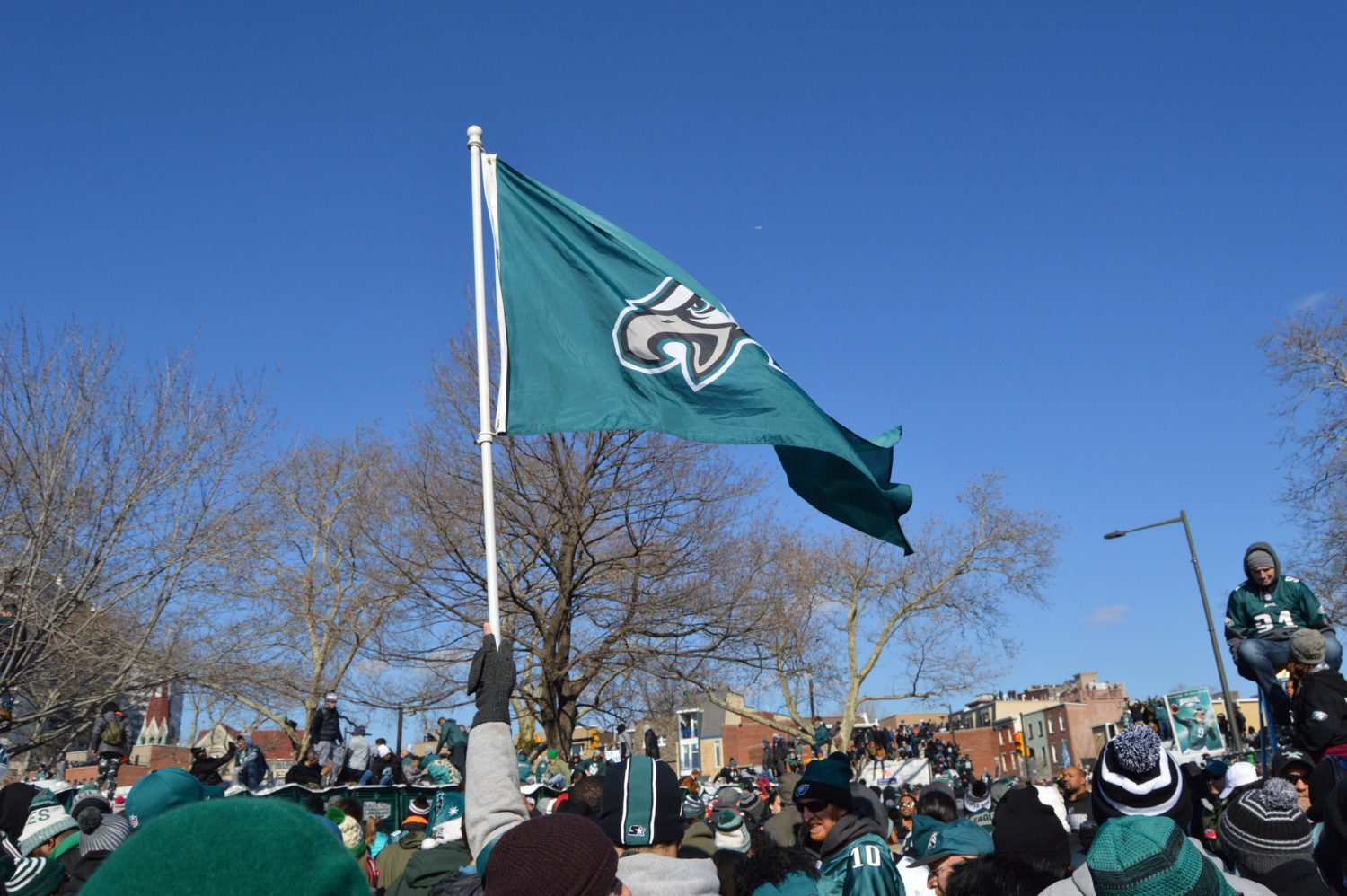 Eagles flag